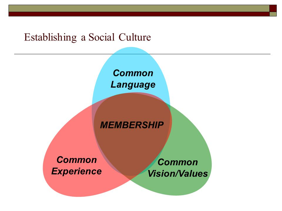 Establishing a Social Culture Common Vision/Values Common Language Common Experience MEMBERSHIP