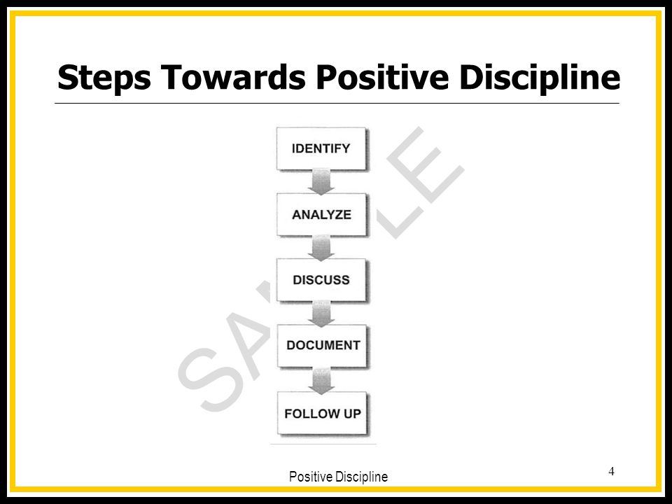 SAMPLE Positive Discipline 4 Steps Towards Positive Discipline