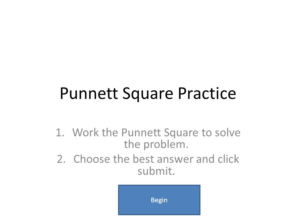 Punnett Square Practice 1.Work the Punnett Square to solve the problem. 2.Choose the best answer and click submit. Begin