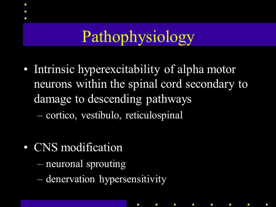 Pathophysiology Intrinsic hyperexcitability of alpha motor neurons within the spinal cord secondary to damage to descending pathways –cortico, vestibu