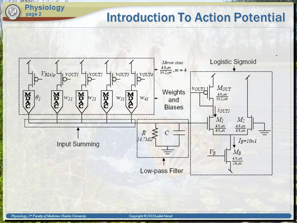 Physiology, 2 nd Faculty of Medicine, Charles University Copyright © 2010 Ludek Nerad Introduction To Action Potential Physiology page 2