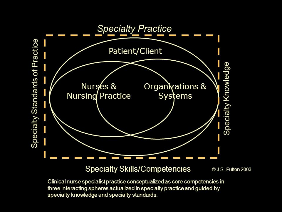 Patient/Client Specialty Practice Specialty Knowledge Specialty Standards of Practice Nurses & Nursing Practice Organizations & Systems Specialty Skil