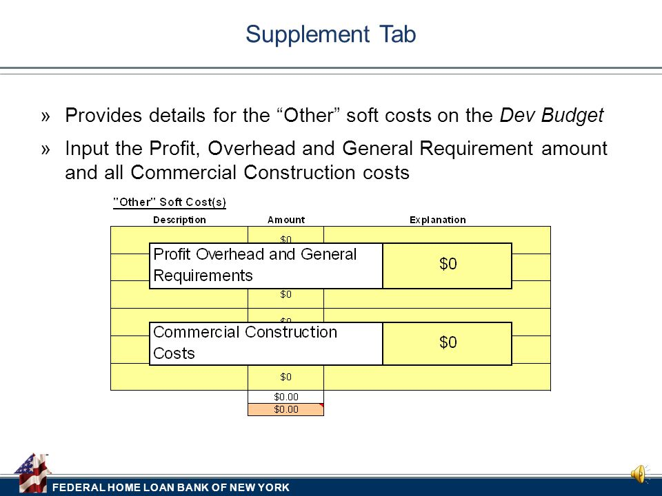 FEDERAL HOME LOAN BANK OF NEW YORK  Provides a breakdown of the Total Project Costs Development Budget Tab –Total Acquisition on Dev Budget must equa