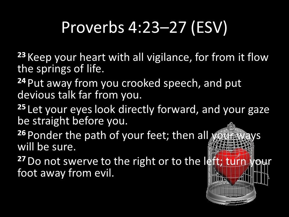 Proverbs 4:23–27 (ESV) 23 Keep your heart with all vigilance, for from it flow the springs of life. 24 Put away from you crooked speech, and put devio