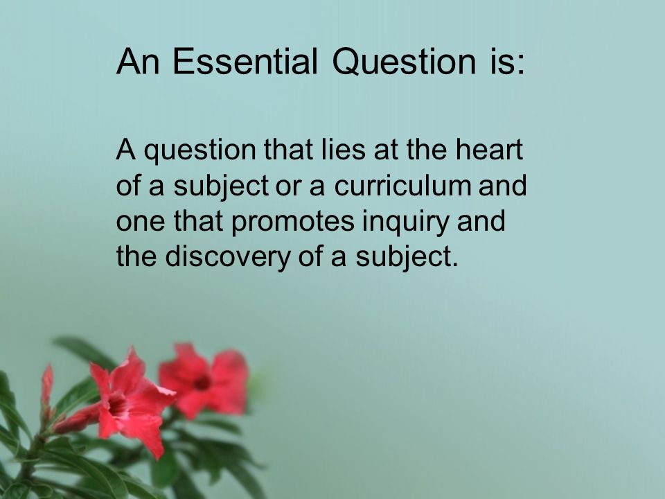 Essential Questions are critical drivers for teaching and learning… They can help students discover patterns in knowledge and solve problems.