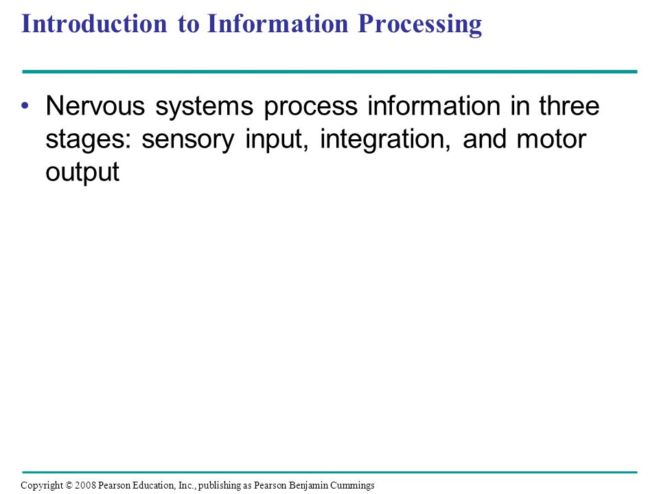 Copyright © 2008 Pearson Education, Inc., publishing as Pearson Benjamin Cummings Introduction to Information Processing Nervous systems process information in three stages: sensory input, integration, and motor output
