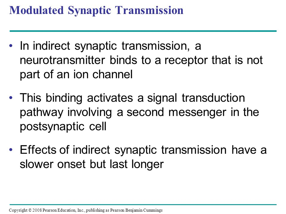 Copyright © 2008 Pearson Education, Inc., publishing as Pearson Benjamin Cummings Modulated Synaptic Transmission In indirect synaptic transmission, a neurotransmitter binds to a receptor that is not part of an ion channel This binding activates a signal transduction pathway involving a second messenger in the postsynaptic cell Effects of indirect synaptic transmission have a slower onset but last longer