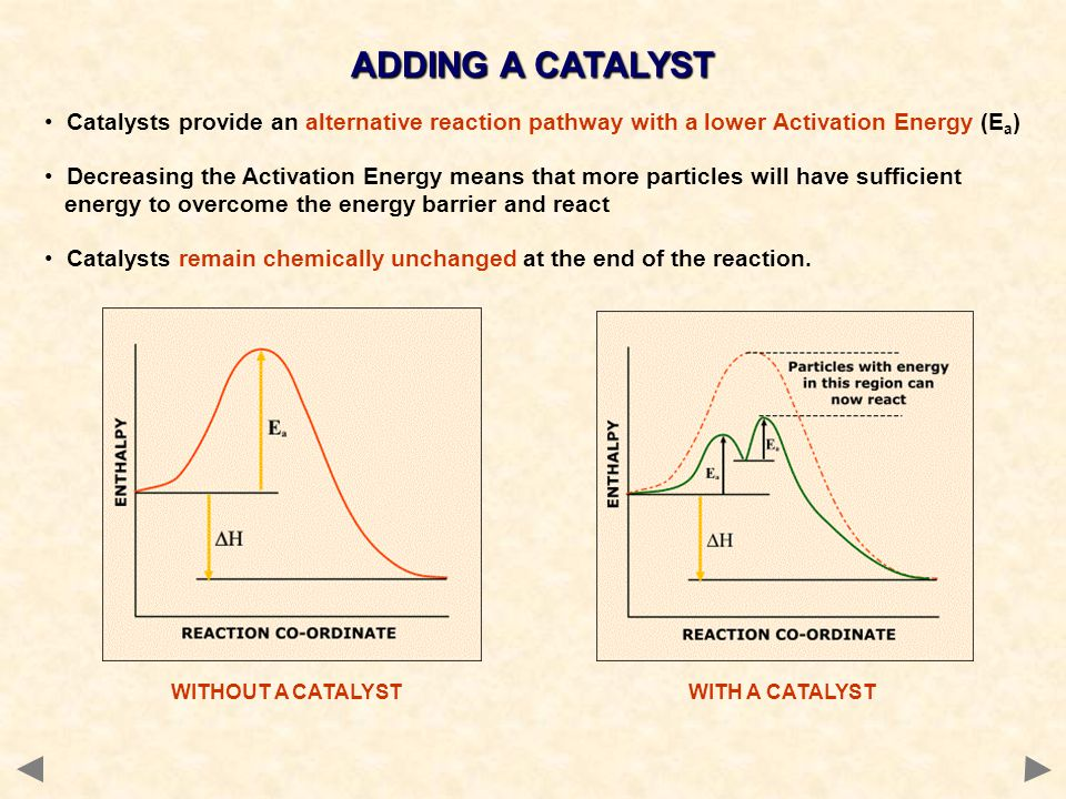 Catalysts provide an alternative reaction pathway with a lower Activation Energy (E a ) Decreasing the Activation Energy means that more particles wil
