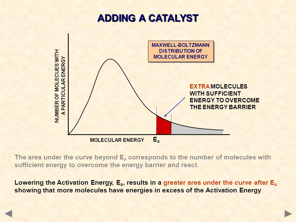 The area under the curve beyond E a corresponds to the number of molecules with sufficient energy to overcome the energy barrier and react. Lowering t