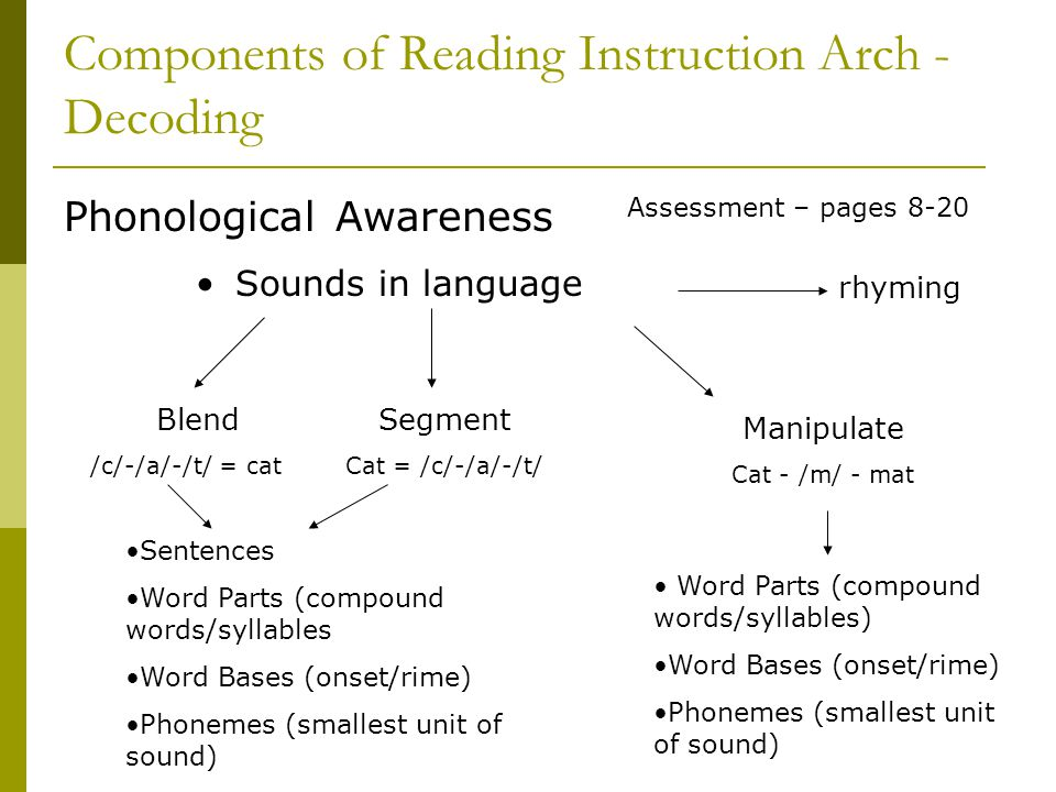 Components of Reading Instruction Arch - Decoding Phonological Awareness Sounds in language Blend /c/-/a/-/t/ = cat Segment Cat = /c/-/a/-/t/ Manipula