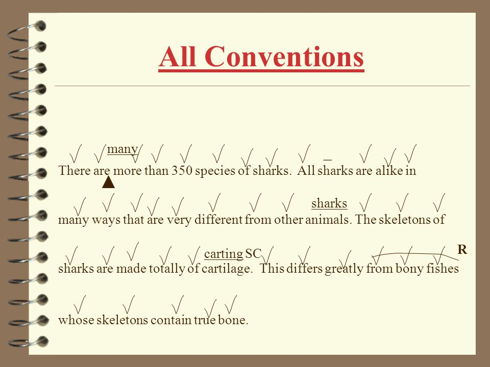 Self Corrections There are more than 350 species of sharks. All sharks are alike in many ways that are very different from other animals. The skeleton