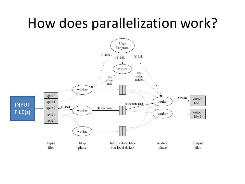 How does parallelization work INPUT FILE(s)