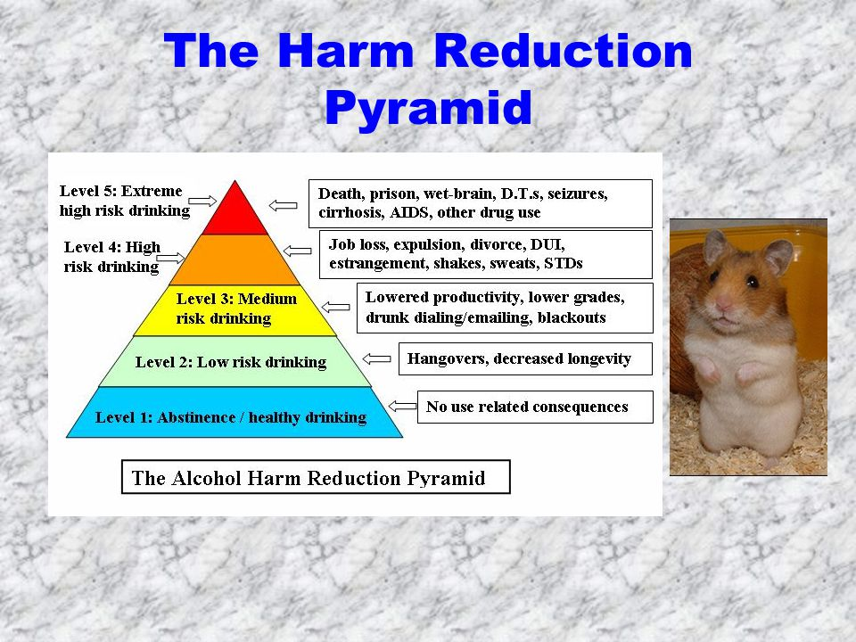 The Harm Reduction Pyramid