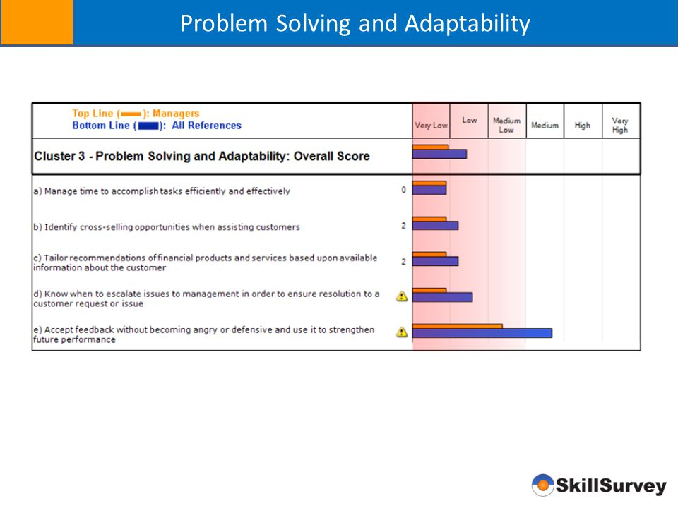 Problem Solving and Adaptability