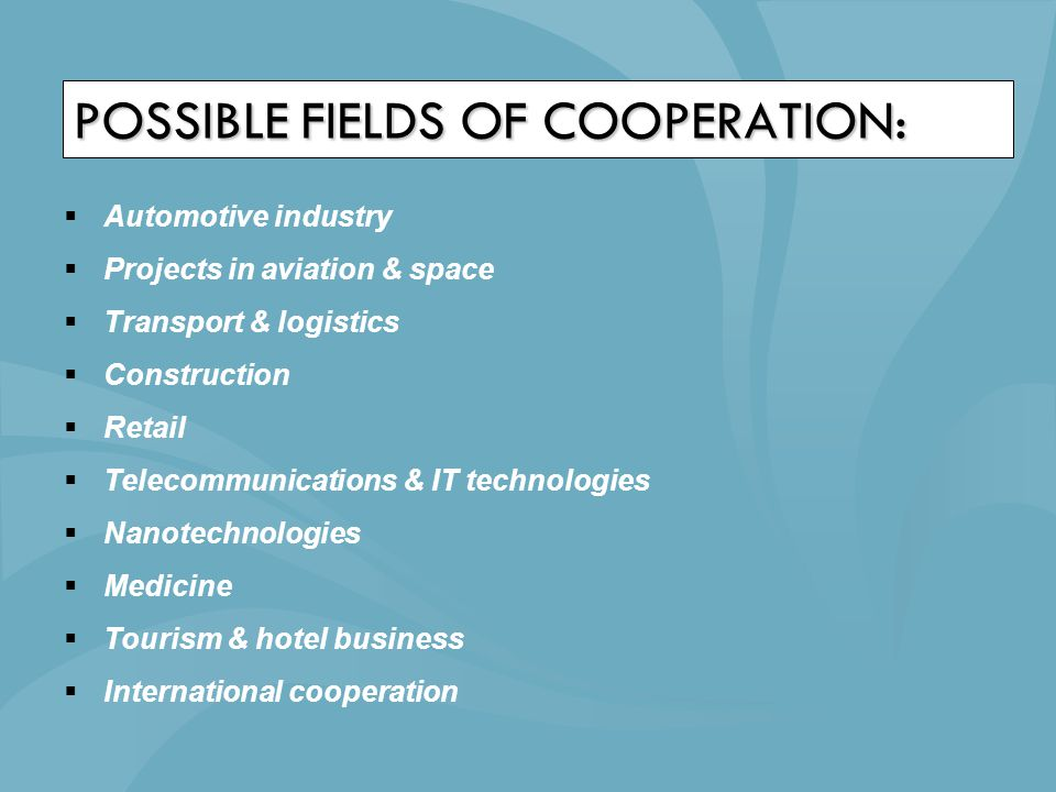 POSSIBLE FIELDS OF COOPERATION:  Automotive industry  Projects in aviation & space  Transport & logistics  Construction  Retail  Telecommunicati