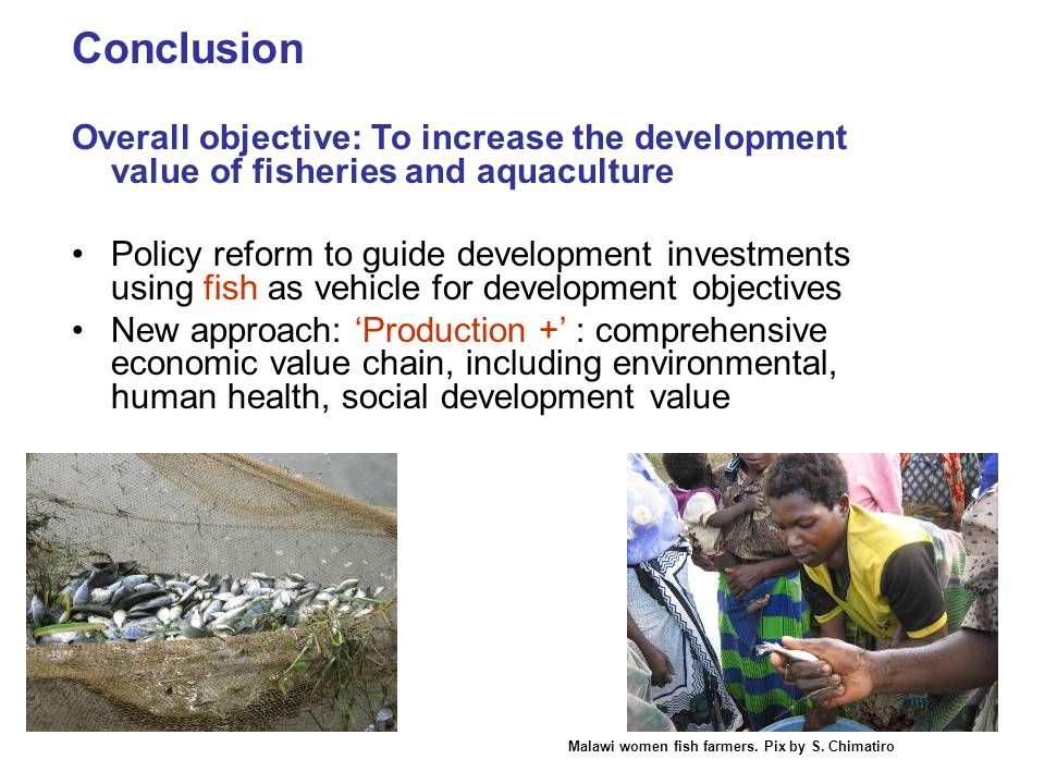 Conclusion Overall objective: To increase the development value of fisheries and aquaculture Policy reform to guide development investments using fish as vehicle for development objectives New approach: 'Production +' : comprehensive economic value chain, including environmental, human health, social development value Malawi women fish farmers.