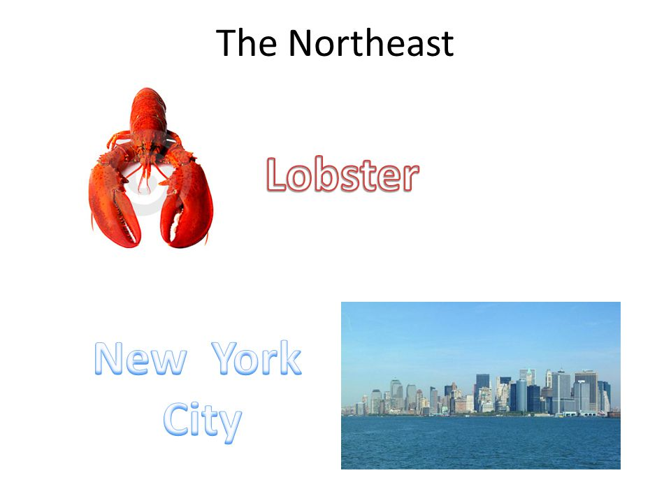 The Northeast