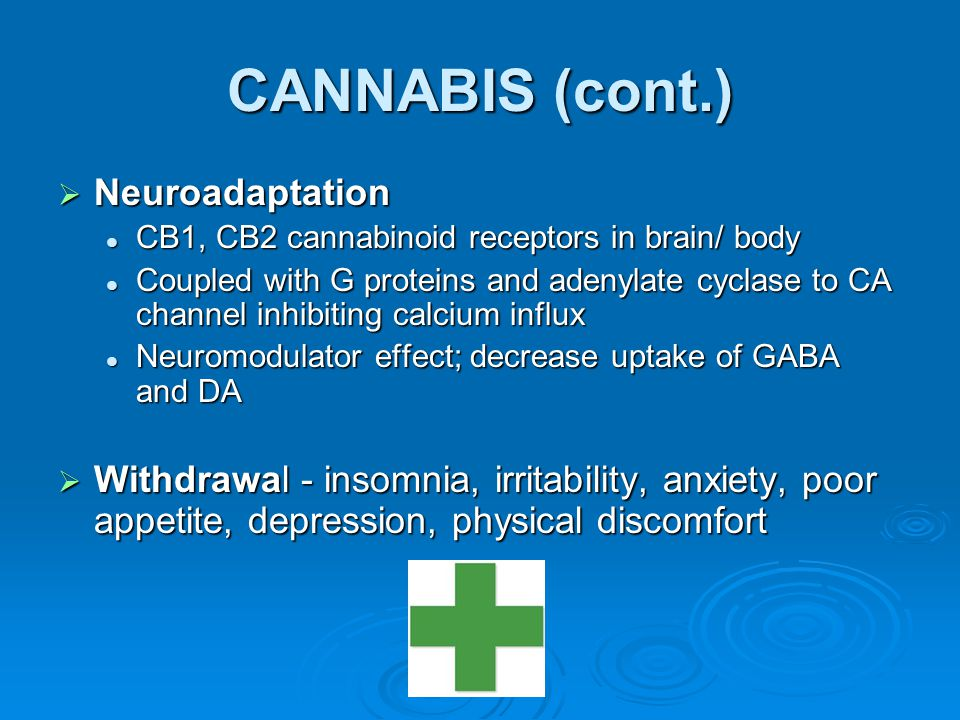 CANNABIS (cont.)  Neuroadaptation CB1, CB2 cannabinoid receptors in brain/ body CB1, CB2 cannabinoid receptors in brain/ body Coupled with G proteins