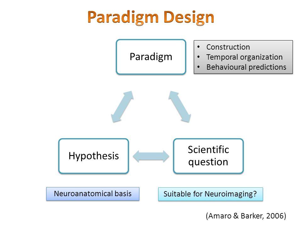 Paradigm Scientific question Hypothesis Construction Temporal organization Behavioural predictions Construction Temporal organization Behavioural pred