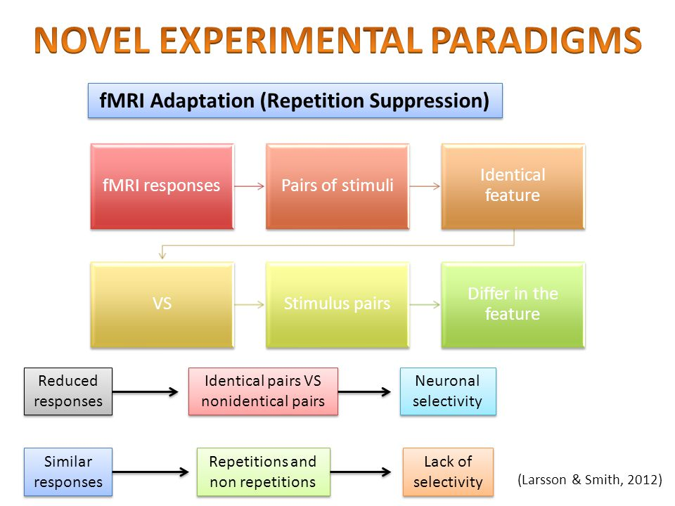 fMRI Adaptation (Repetition Suppression) fMRI responsesPairs of stimuli Identical feature VSStimulus pairs Differ in the feature (Larsson & Smith, 201