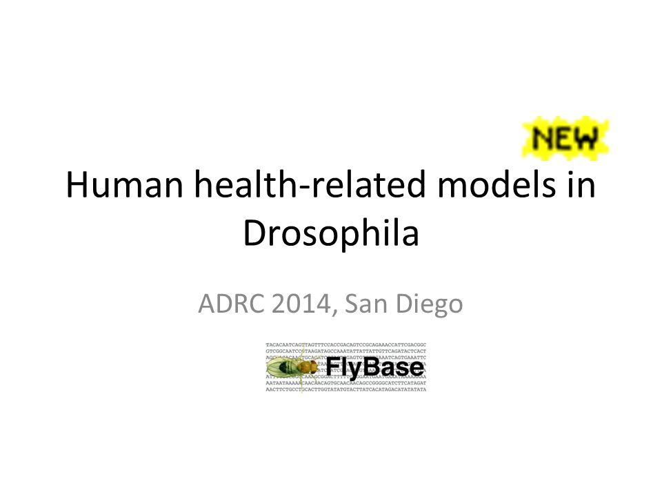 In this talk….Why human disease models.