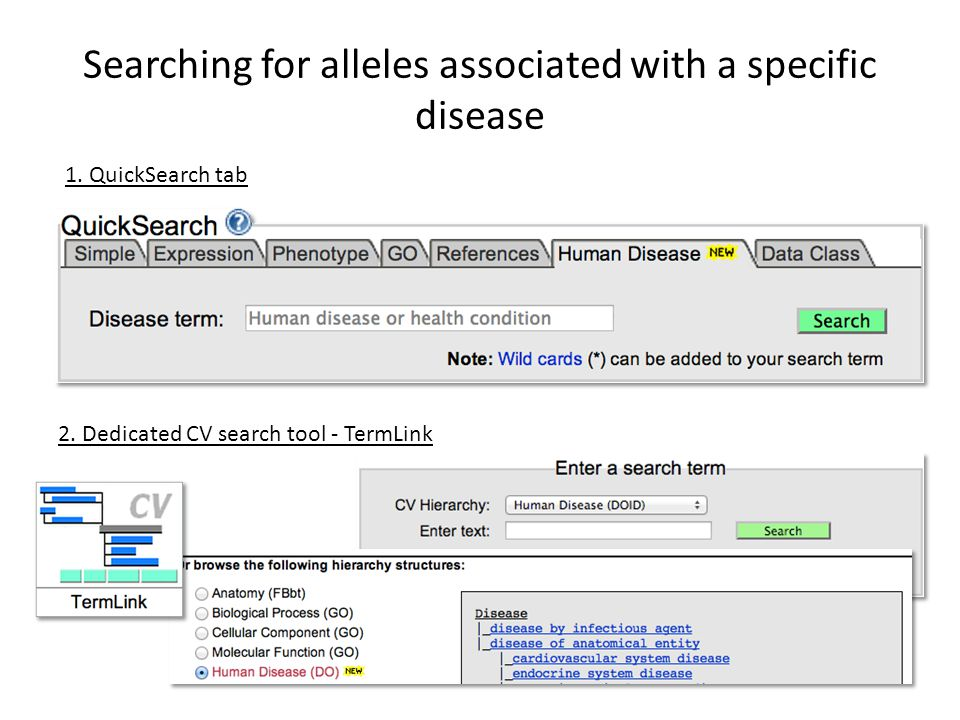 Searching for alleles associated with a specific disease 2.