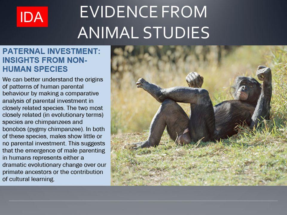 IDA EVIDENCE FROM ANIMAL STUDIES
