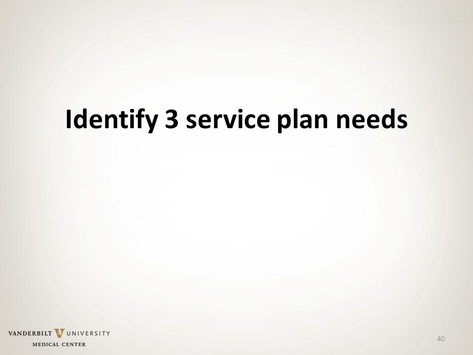 40 Identify 3 service plan needs