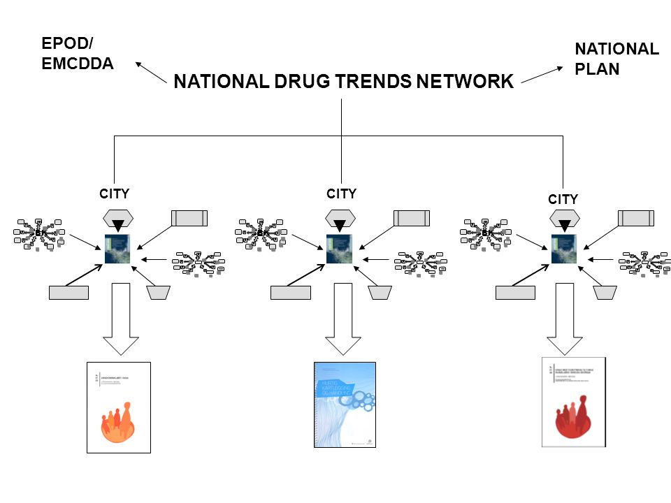 SBK NATIONAL DRUG TRENDS NETWORK CITY EPOD/ EMCDDA NATIONAL PLAN