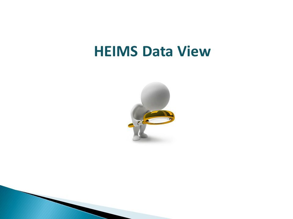 HEIMS Data View