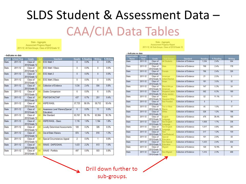 SLDS Student & Assessment Data – CAA/CIA Data Tables Drill down further to sub-groups.