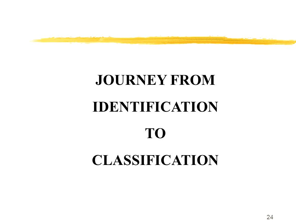 24 JOURNEY FROM IDENTIFICATION TO CLASSIFICATION
