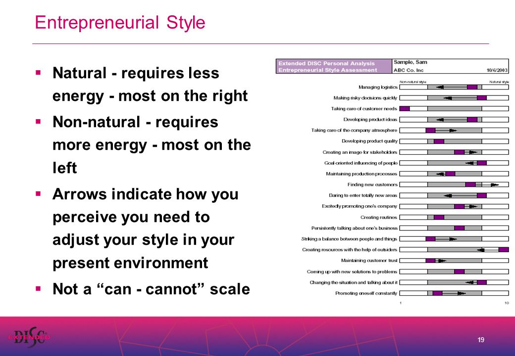 19 Entrepreneurial Style  Natural - requires less energy - most on the right  Non-natural - requires more energy - most on the left  Arrows indicate how you perceive you need to adjust your style in your present environment  Not a can - cannot scale