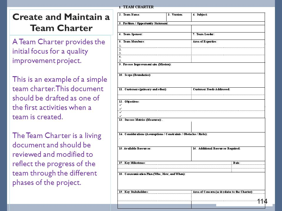 A Team Charter provides the initial focus for a quality improvement project.