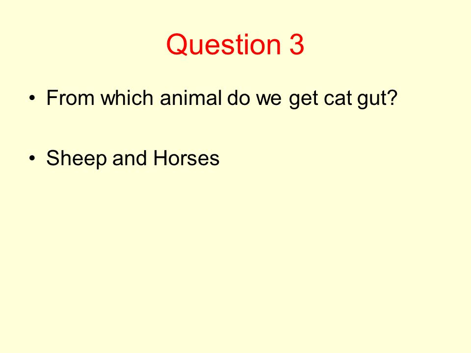 Question 3 From which animal do we get cat gut? Sheep and Horses