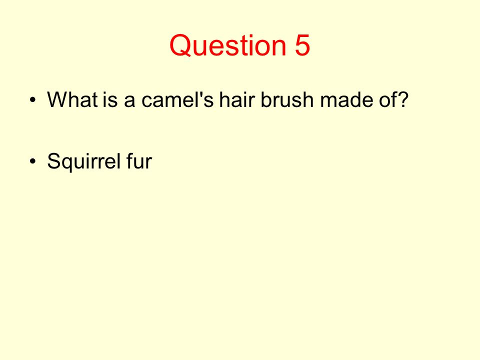 Question 5 What is a camel s hair brush made of? Squirrel fur