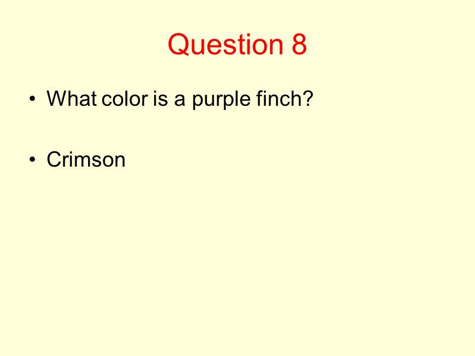 Question 8 What color is a purple finch Crimson