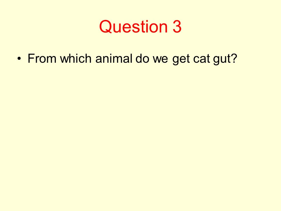 Question 3 From which animal do we get cat gut