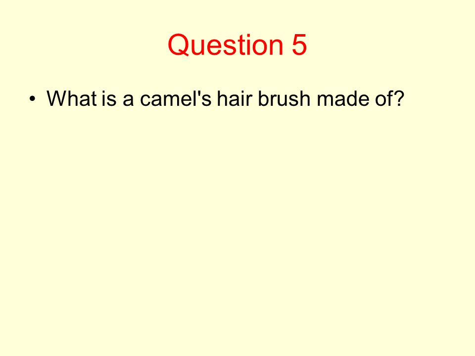 Question 5 What is a camel s hair brush made of?