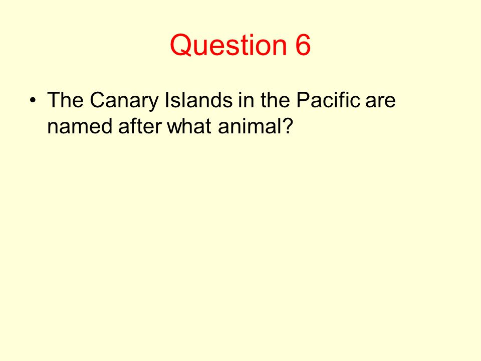 Question 6 The Canary Islands in the Pacific are named after what animal