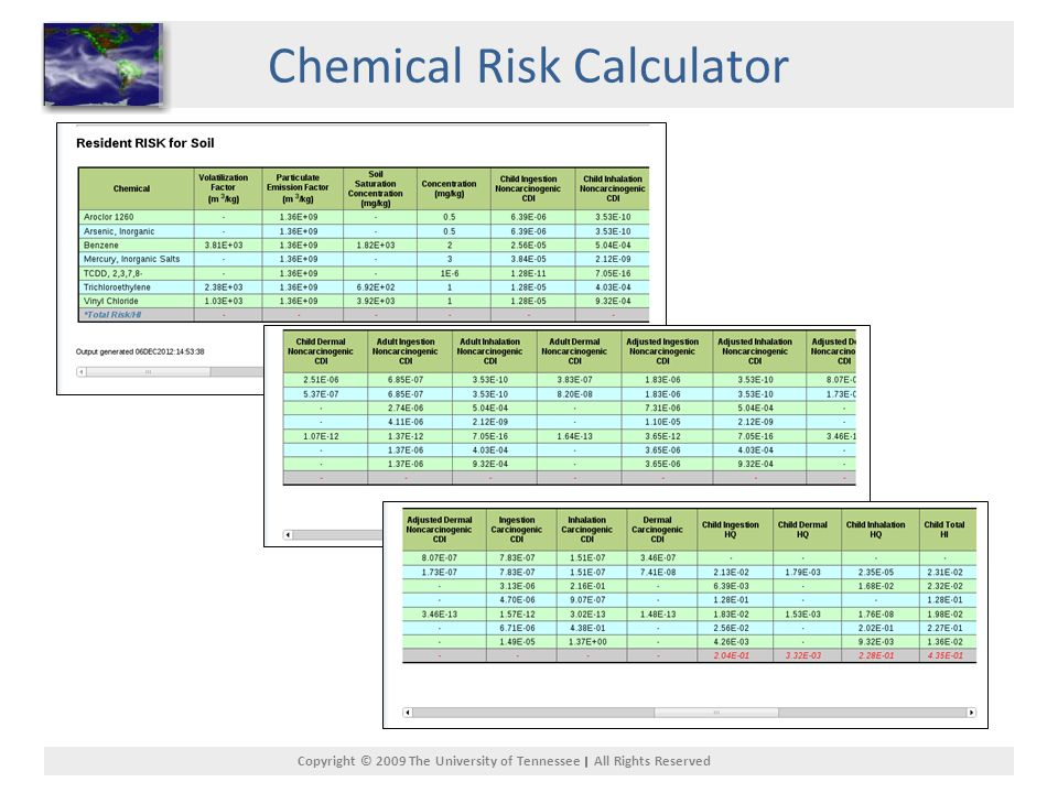 Copyright © 2009 The University of Tennessee All Rights Reserved Chemical Risk Calculator