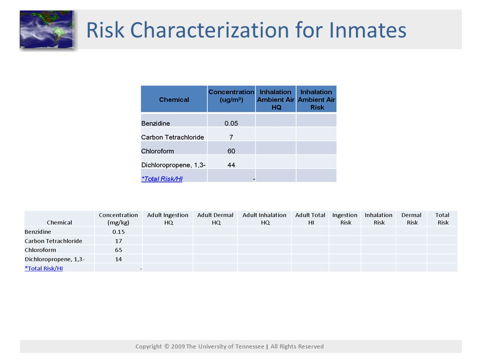 Copyright © 2009 The University of Tennessee All Rights Reserved Risk Characterization for Inmates