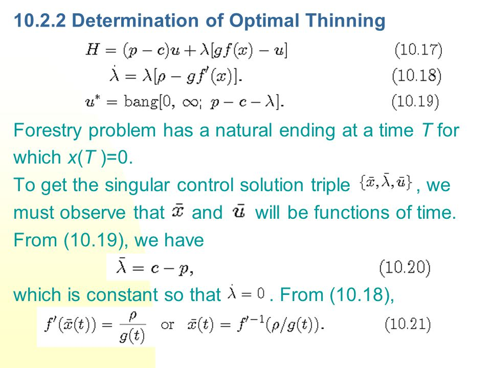 Determination of Optimal Thinning Forestry problem has a natural ending at a time T for which x(T )=0.