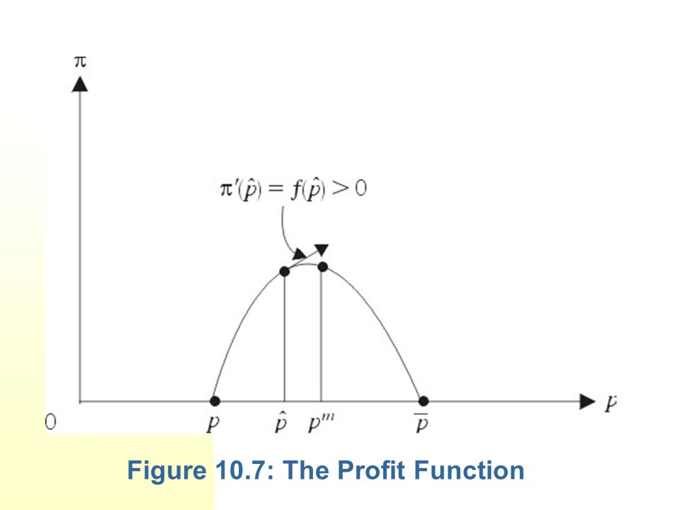 Figure 10.7: The Profit Function