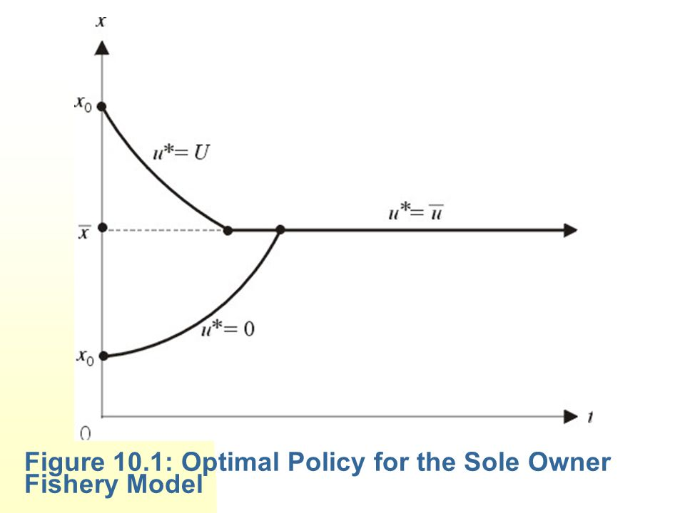 Figure 10.1: Optimal Policy for the Sole Owner Fishery Model