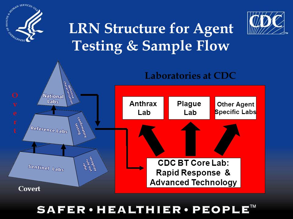 Laboratories at CDC LRN Structure for Agent Testing & Sample Flow Anthrax Lab Plague Lab Other Agent Specific Labs CDC BT Core Lab: Rapid Response & A