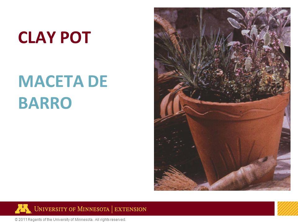12 © 2011 Regents of the University of Minnesota. All rights reserved. CLAY POT MACETA DE BARRO