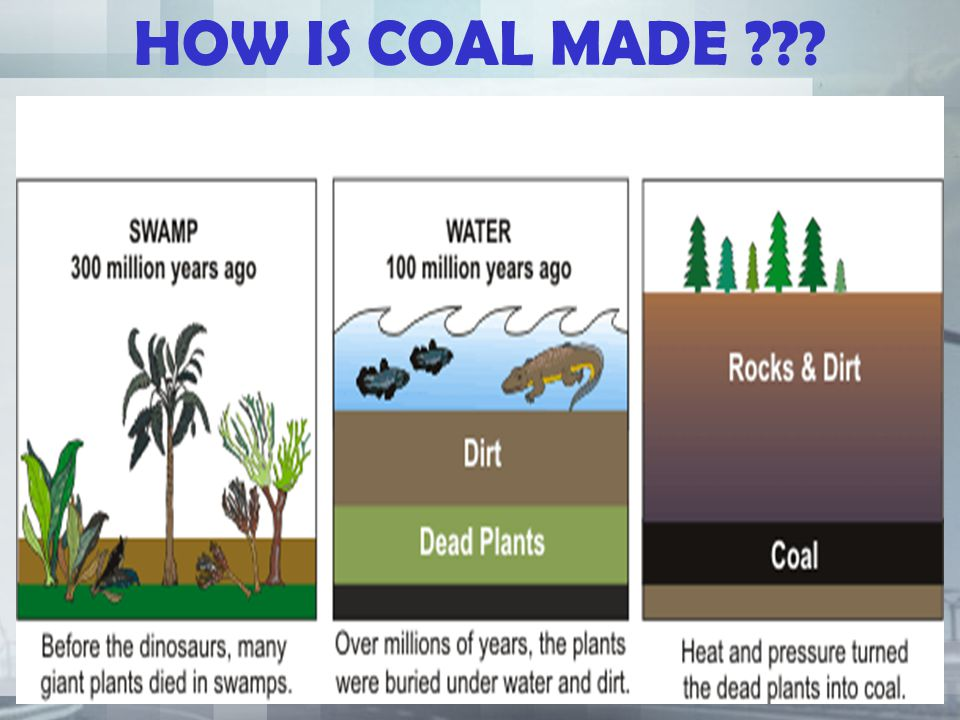 HOW IS COAL MADE ???