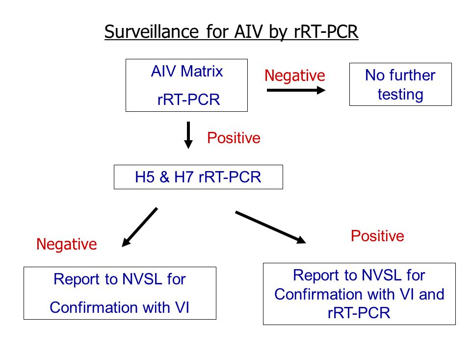 AIV Matrix rRT-PCR H5 & H7 rRT-PCR Positive No further testing Positive Report to NVSL for Confirmation with VI Report to NVSL for Confirmation with VI and rRT-PCR Negative Surveillance for AIV by rRT-PCR