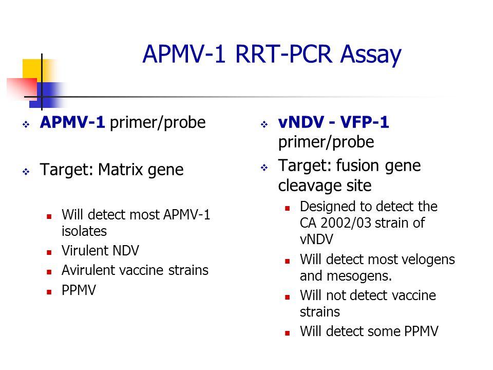 APMV-1 RRT-PCR Assay  APMV-1 primer/probe  Target: Matrix gene Will detect most APMV-1 isolates Virulent NDV Avirulent vaccine strains PPMV  vNDV - VFP-1 primer/probe  Target: fusion gene cleavage site Designed to detect the CA 2002/03 strain of vNDV Will detect most velogens and mesogens.